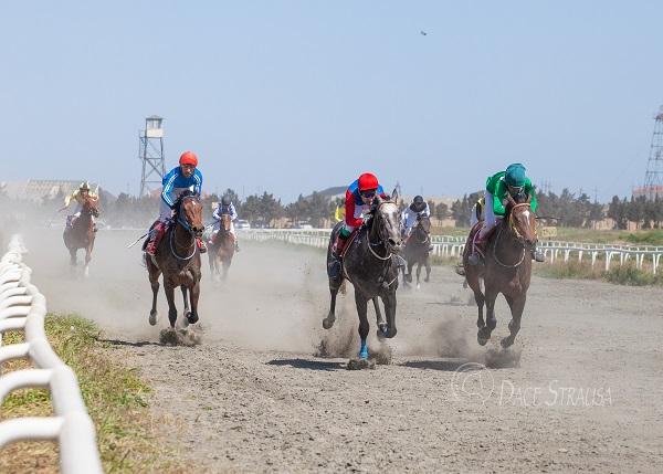 Azərbaycan Respublikası Atçılıq Federasiyası  Cıdır yarışı keçirib.